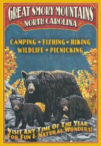 Great Smokey Mountains - Bears